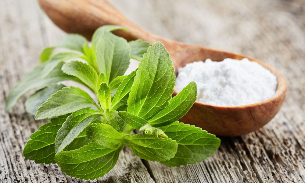 stevia in your daily diet