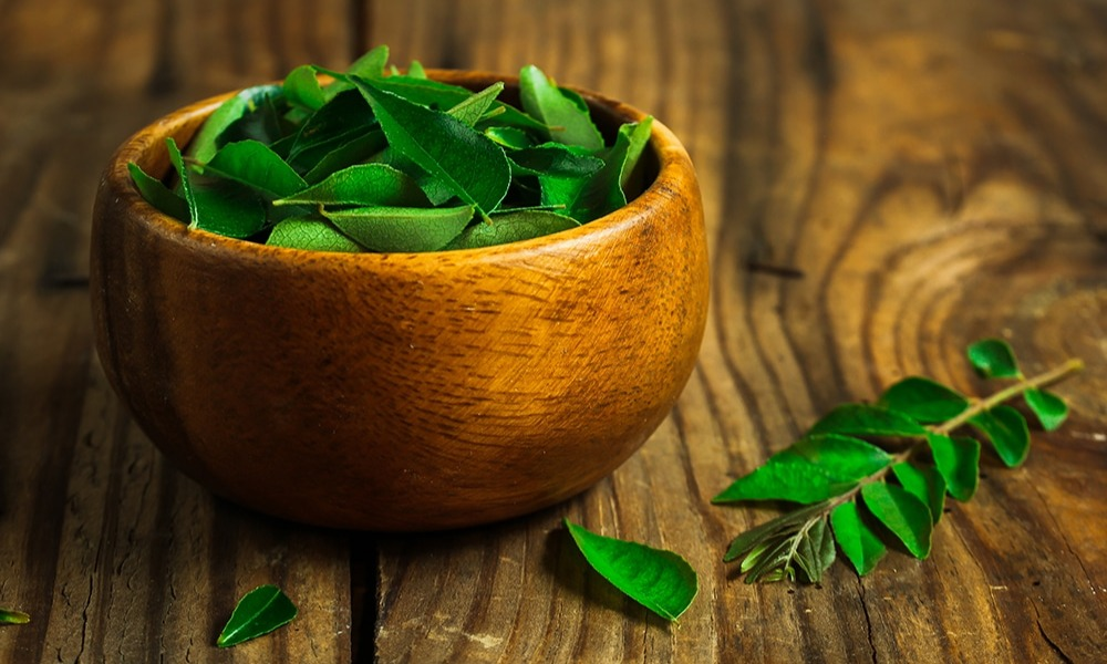 Curry Leaves Help Manage Cholesterol