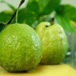 #Guava : జామ యొక్క అద్భుతమైన ఆరోగ్య ప్రయోజనాలు తెలుసా ?