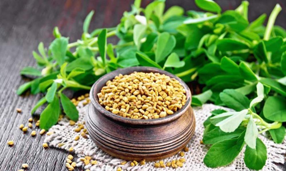 Health Benefits of Fenugreek Leaves
