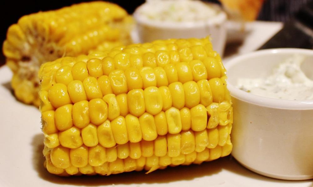 Sweet Corn For Diabetes